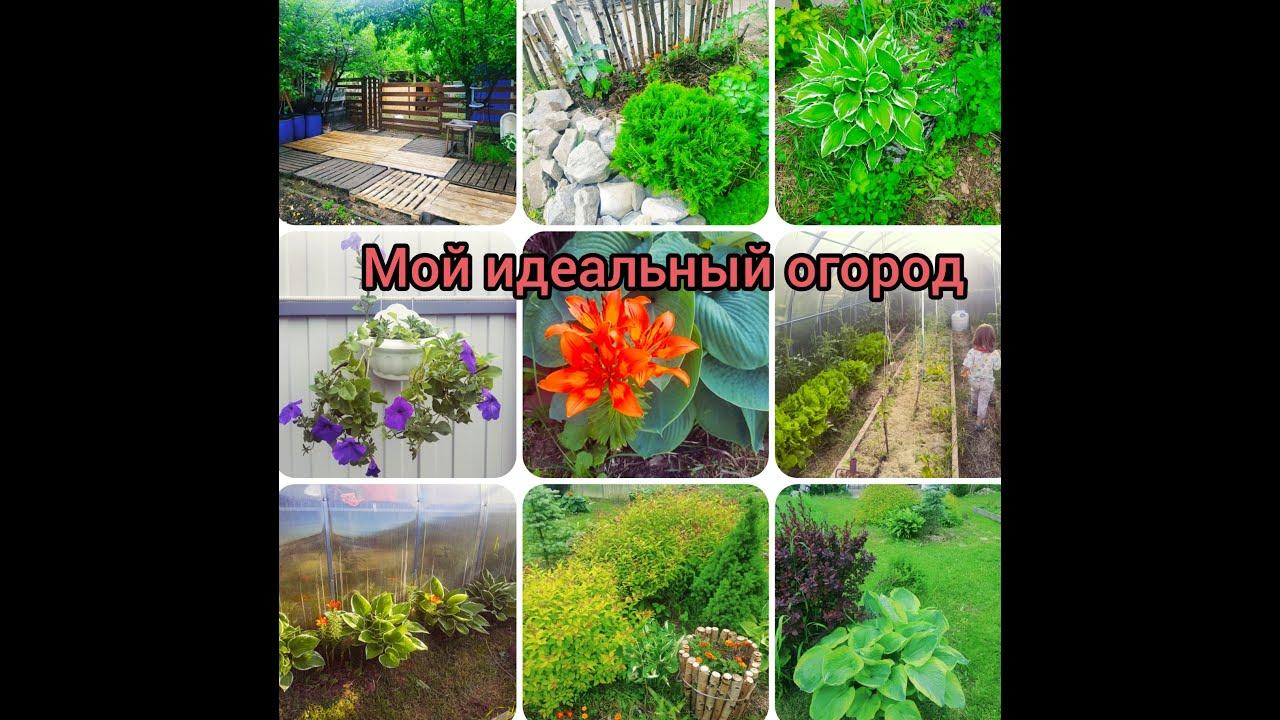 ✔️Мой идеальный огород