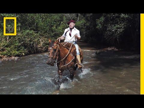 Horses and Solitude: Inside the Life of a Brazilian Gaúcho | Short Film Showcase