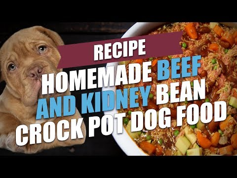 Homemade Beef And Kidney Bean Crock Pot Dog Food Recipe