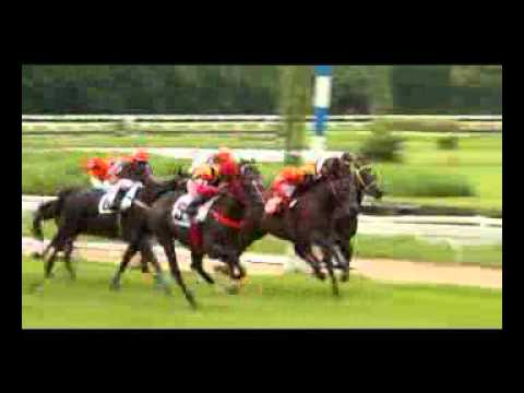ม้าแข่งสนามไทย อา. 25 สค. 56 เที่ยว 1