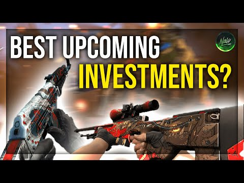 THE BEST CS:GO UPCOMING INVESTMENTS | Early 2020 Investing!