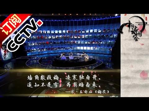 《中国诗词大会(第二季)》20170204 第七场 彭敏个人追逐赛胜出攻擂 | CCTV