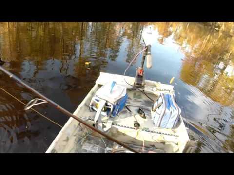 Swamp Fishing