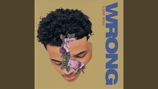 Download Wrong Mp3 and Videos