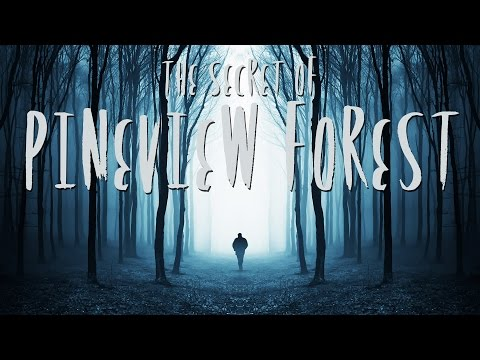 BEWARE THE WOODS | The Secret of Pineview Forest