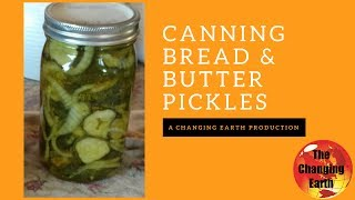 How To Can Bread & Butter Pickles