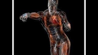 Уроки Кикбоксинга и Айкидо от Евгения Шихотова!!!(мое учебное видео http://pobeda-v-drake.ru/ бокс, кикбоксинг, муай тай, каратэ, карате, таэквондо, тхэквондо, айкидо,..., 2011-05-09T10:59:49.000Z)