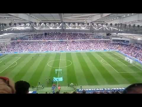 Amex falmer stadium Brighton vs Newcastle