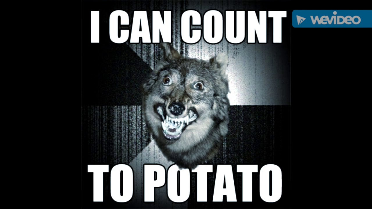 Funny Wolf Memes To Make U Laugh Youtube