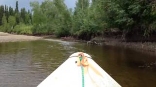 Grumman Sport Boat Swamp Runner Shallow Water