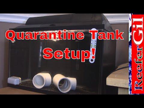 How To Setup Quarantine Tank