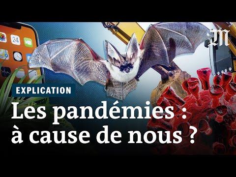 Comment l'humanité déclenche des pandémies