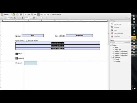 How To Create A Fillable Form Using Word 2010 And Adobe Acrobat Professional X