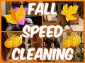 FALL SPEED CLEANING   2017