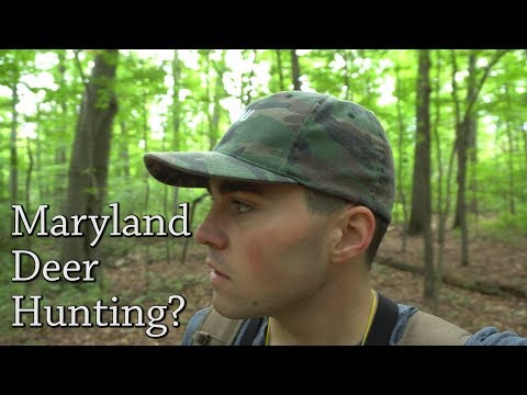 Deer Hunting In Maryland This Year?