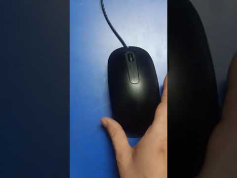 computer education (holding a computer mouse)