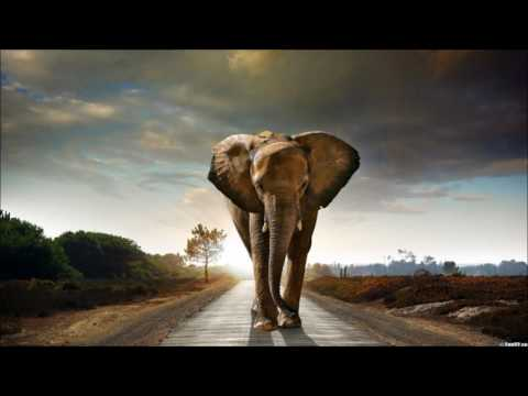 Alex H - Lost Kingdoms of Africa