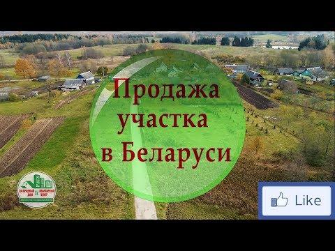 Продажа участка в Беларуси | деревня Симоны. Продажа недвижимости.