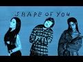 Ed Sheeran Shape Of You Remix Ft Nicki Minaj Rihanna mp3