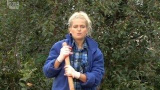 Все о выращивании огурцов. Формирование грядки.Часть 3(Наш фильм о том, как успешно вырастить хрустящие огурчики на своем садовом участке. Если вы хотите избежать..., 2014-05-17T13:44:55.000Z)