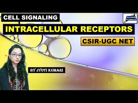 INTRACELLULAR  RECEPTORS || LIGAND AND RECEPTORS (PART-2) || TYPE OF RECEPTORS || CSIR NET | GATE |