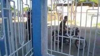 San Fernando de Apure, RAP de barrio,(Urdaneta)  El Checo Josue Silva  Ak Tripitaka