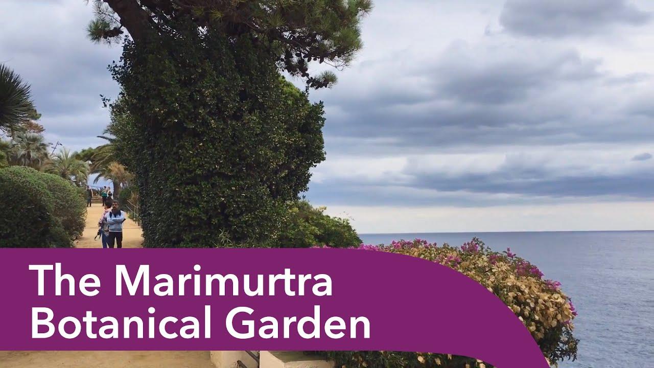Costa brava jardins botaniques marimurtra botanical gardens - Le Jardin Botanique Marimurtra