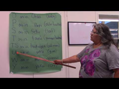 Shoshoni Language Learning - Alphabet