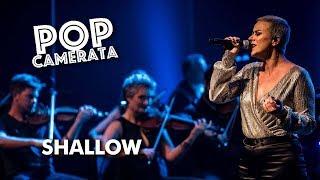 SHALLOW - Lady Gaga - POP Camerata