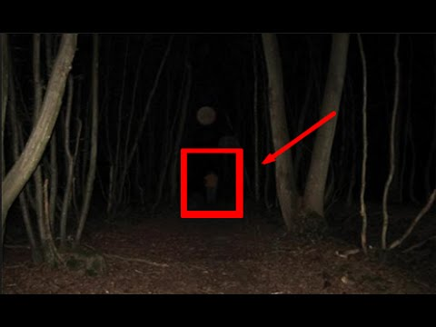Exploring The Haunted Forest At Night Gone Wrong Youtube