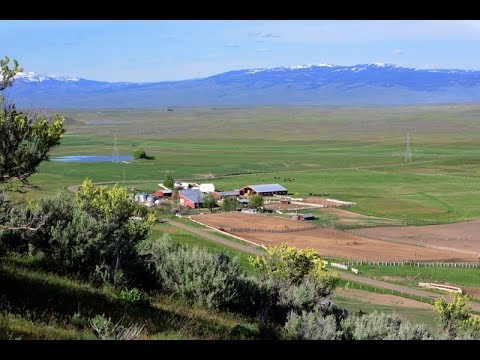 Beautiful Idaho Cattle Ranch And Land For Sale