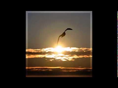 Keith Moore - Healing in His wings