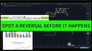 FOREX MARKET PREVIEW - Is The EURO Ready To Reverse?