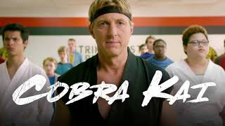 COBRA KAI - REVIEW
