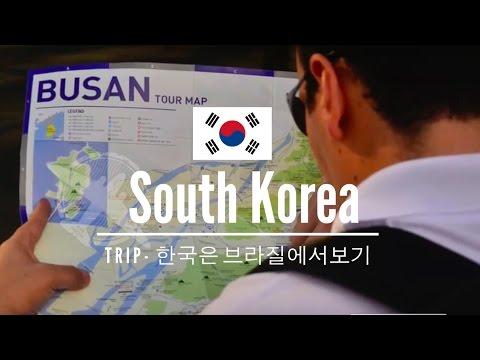 #2 South Korea | Coréia do Sul | Busan, Sea Life, Shinsegae