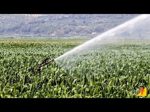 Clique e veja o vídeo Curso a Distância Manejo de Irrigação -  Manejo de Regra Variável - Cursos CPT