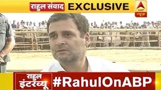 Congress President Rahul Gandhis Interview To ABP NEWS