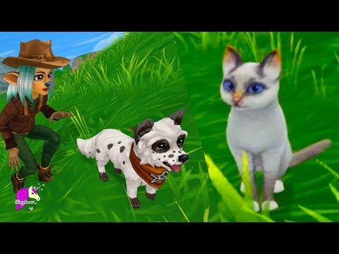 New Cat + Dog Star Stable Online Yule Goats Quest Review Let's Play Horse Video