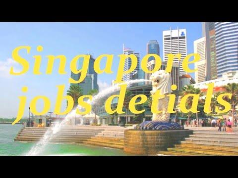 #Singaporejob What is ip Singapore visa types Tamil Singapore IP  How to apply Singapore job Tamil