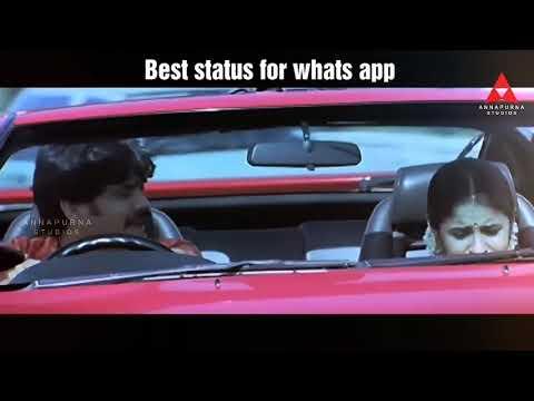 Best status for whatsapp143