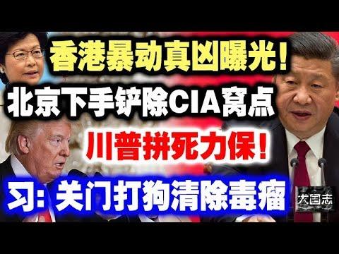香港暴动真凶�光�北京下手铲除CIA�点,�普拼死力��习:关门打狗,清除毒瘤