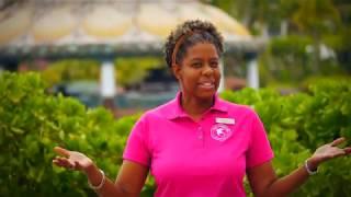 Marine Life Care - Atlantis Bahamas