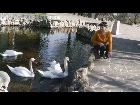Пятигорск Парк Родник