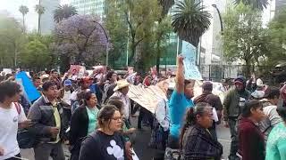 Marchan en CDMX por asesinato del activista Samir Flores (FOTOS y VIDEO)