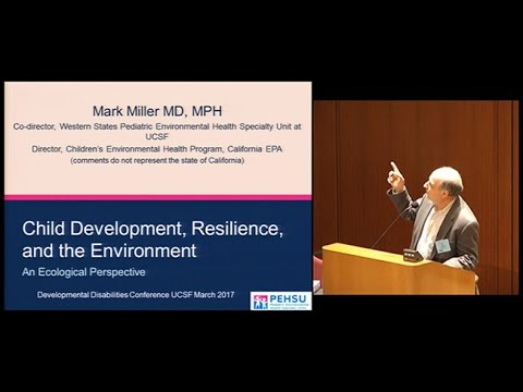 Child Development Resilience and the Environment: An Ecologi