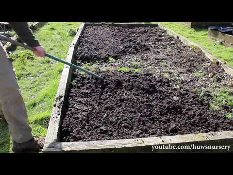 Best Way to Prepare Raised Beds for Winter - 60 Second Gardening
