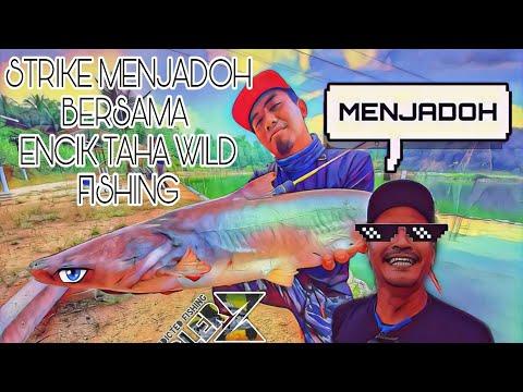 Strike Menjadoh Bersama Encik Taha Wild Fishing!!