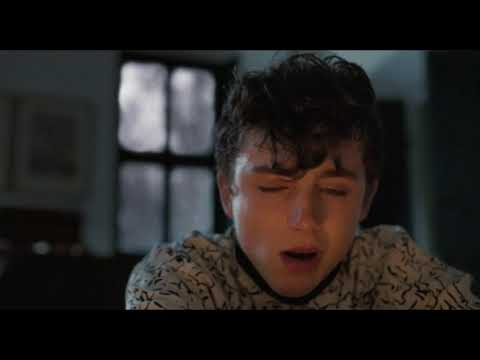 The Final Scene / Elio crying in front of the fireplace / Call Me By Your Name (2017)