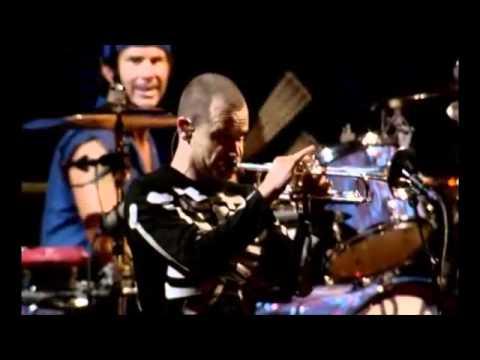 John Frusciante, Flea & Chad Smith solo RHCP