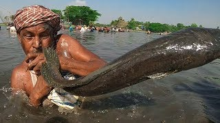 Best Polo Fishing Don't Miss Real Fish Hunting